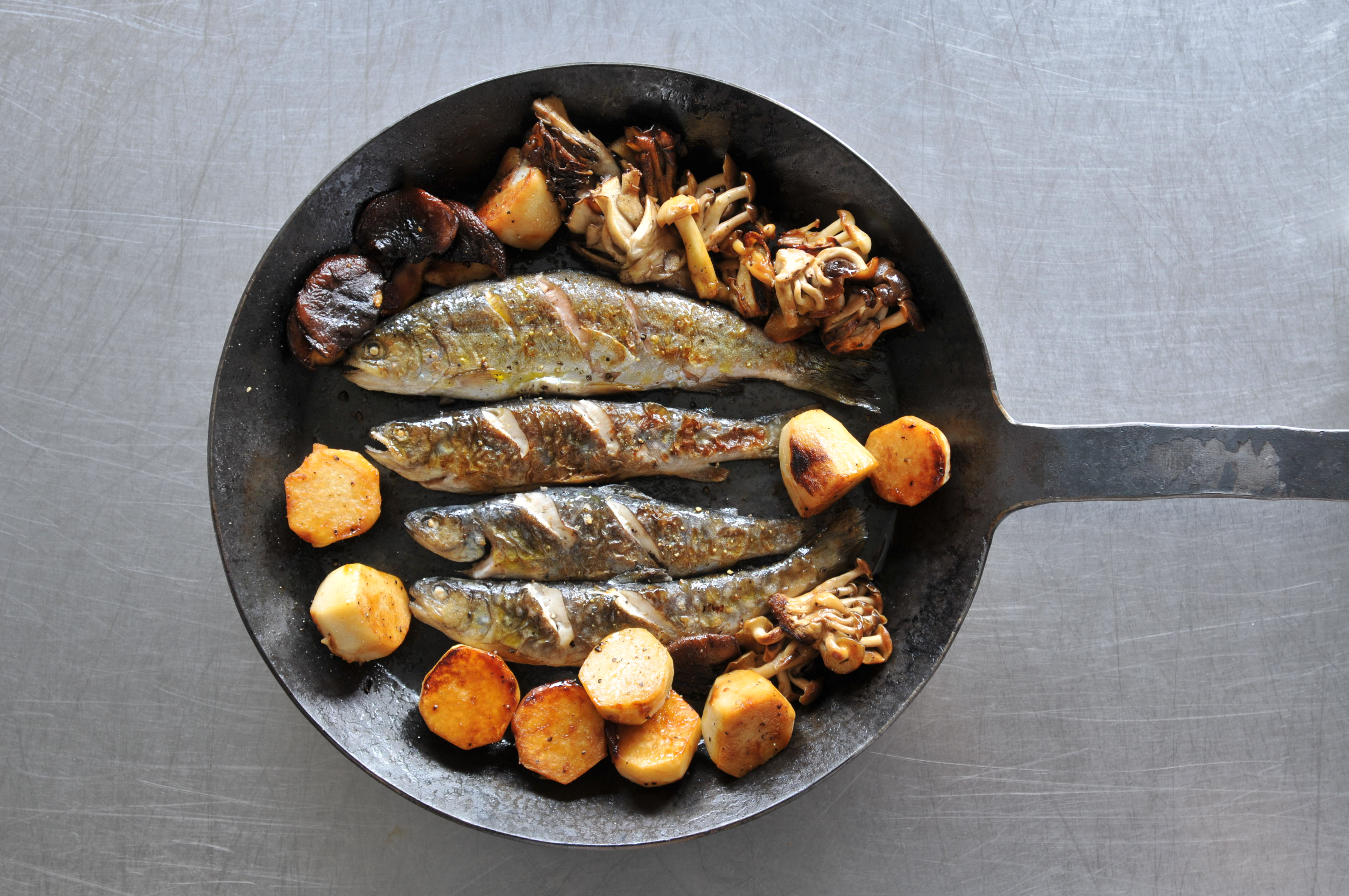turk pan에 대한 이미지 검색결과